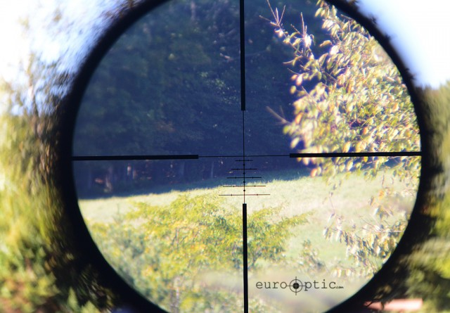 View through reticle of Swarovski Z3. Simply a stunning amount of detail in this forest at a range of over 400 yards.